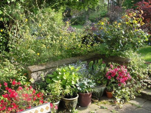 The Green Door Open Garden