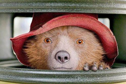 Film: Paddington 2